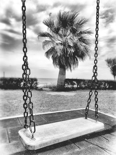 swing Black And