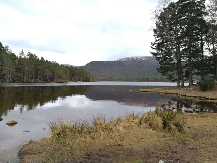 Loch An Eilein Tree Lake Reflection Water Nature Outdoors Sky Landscape Tranquility Cloud - Sky No People Plant Beauty In Nature Day Mountain Scenics