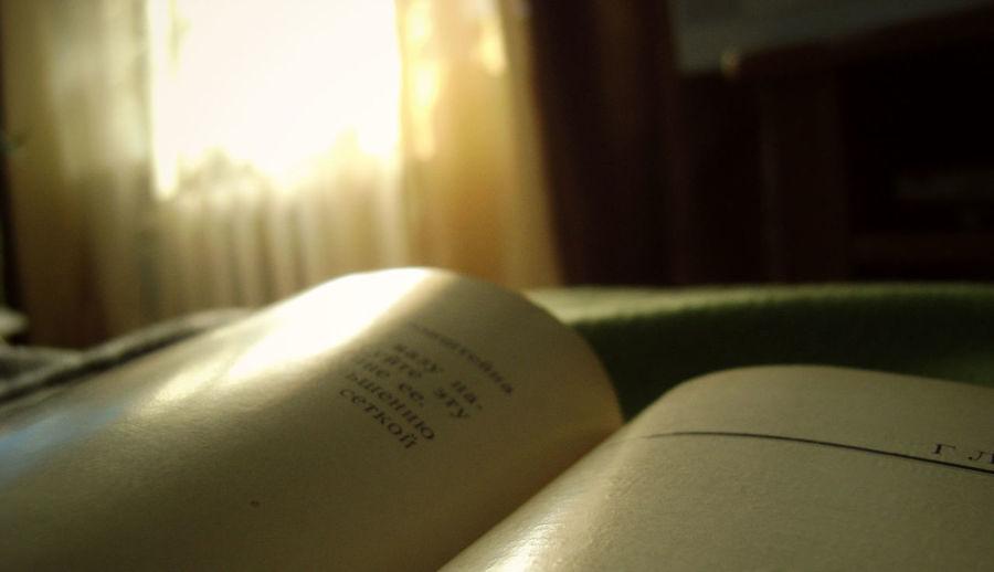 Evening Book Sunshine