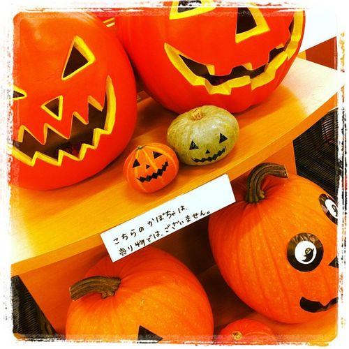 はい、分かってますよw Halloween Owataris
