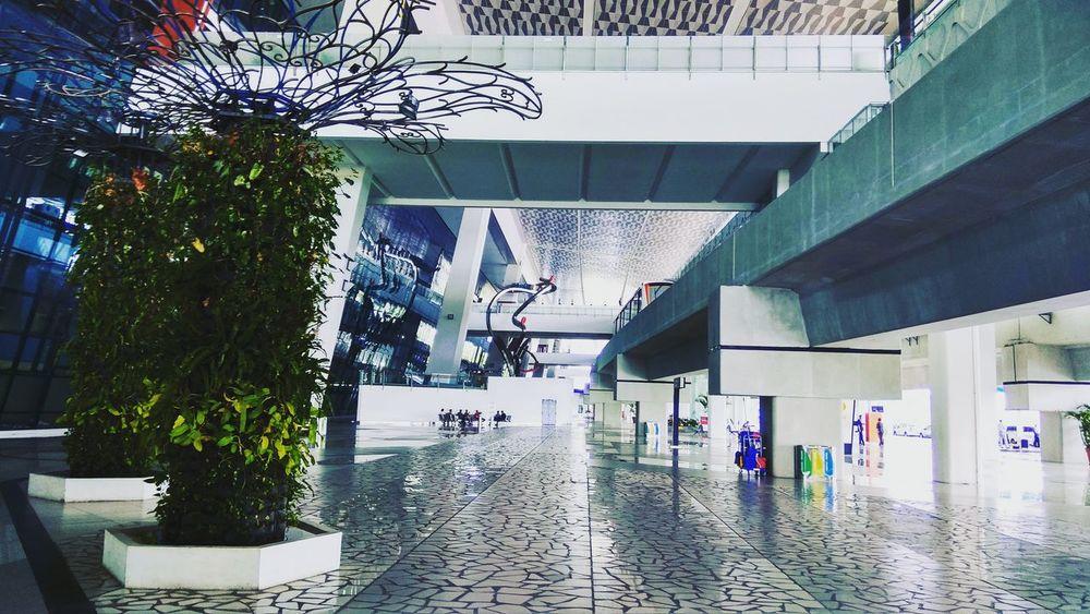 """ sky track 🚟 _ flic.kr/p/21LjmgZ _ Architecture Built Structure Tree Bandara Sukarno Hatta Sukarno Hatta Airport Exterior Design Exterior View Exterior Building Airport Architectural Column Architecture Skytrain Terminal 3 Soekarno-hatta International Airport Teminal 3"