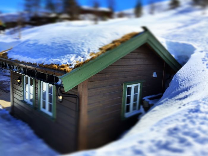 Snow Cold Temperature Winter House Selective Focus Frozen Wood - Material White Color Outdoors Nature Building Cabin Snowy Cabin Norway Nature Day No People Building Exterior Architecture Cozy Winter Wonderland Cold Inviting Peaceful Shelter Norway