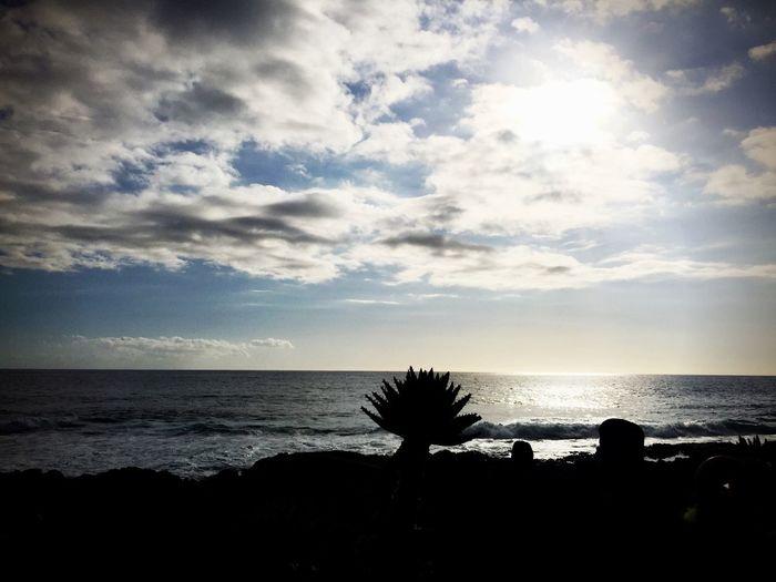 Am Meer... Sunset Sillouette Meer La Palma Tadaa Community EyeEm Deutschland EyeEm Best Shots EyeEm Nature Lover