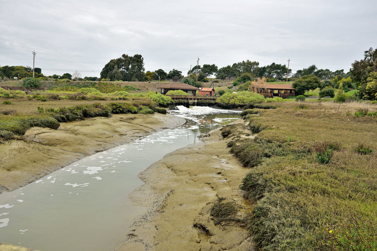 Newark Slough Trail 3 Fremont, Ca. Newark Slough Trail Tidal Trail Pump House Pipe Irrigation Gate Main Channel To Crystallizer Ponds Flowing Water Channel Banks Mudflats Tidal Wetlands Marsh Reflections Reflections In The Water Reflected Glory Nature Beauty In Nature Nature_collection Landscape_Collection Landscape_photography Western Coyote Hills Watershed Power Poles & Lines Learning Center Equipment Shed Footbridge Tree Water Sky Landscape Stream - Flowing Water