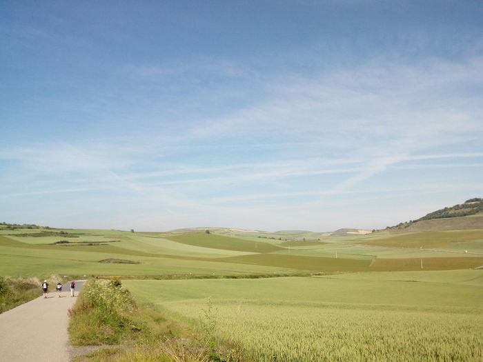 People Bicycling On Road Along Countryside Landscape