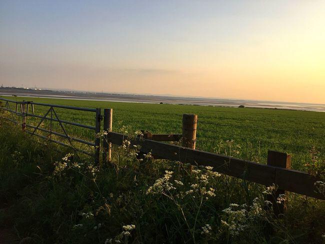 Halevillage Hale Gate Liverpool View Evening Sun Longwalk Farmland Northwest Rivermersey The Great Outdoors - 2017 EyeEm Awards