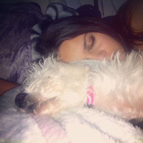 We be trying to be cute lol Sleepytime Assis Dog Babygirl cutie simplybeingalice livinglife oc caligirl collegelife