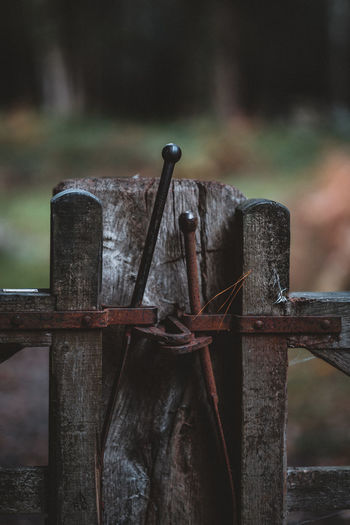 Countryside gate Metal Focus On Foreground Wood - Material Close-up No People Day Rusty Fence Old Boundary Outdoors Nature Barrier Land Protection Safety Field Post Tree Security Wooden Post Bark