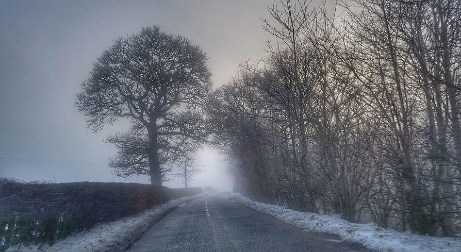 Misty journey to work this morning. Yair Scottish Borders Scotland Winter Road Power In Nature Car Point Of View Snowcapped Snow Covered Extreme Weather Empty Road Cold Snow The Great Outdoors - 2018 EyeEm Awards Capture Tomorrow