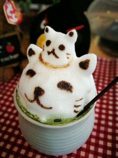 Matcha Latte Food And Drink Matcha Latte Latteart Kitty Cats 🐱 Bangkok Thailand Slowlife Cafe Foodstagram Foodpics Indulgence Foodporn Foodgasm Foodphotography Foodie