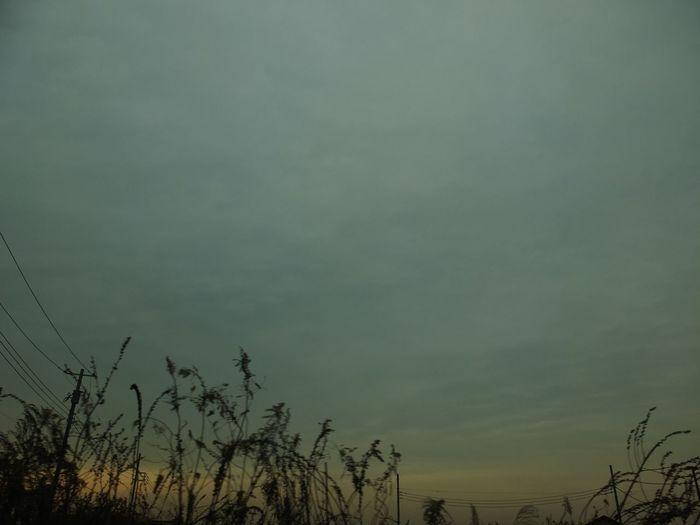 冬空 Cloud