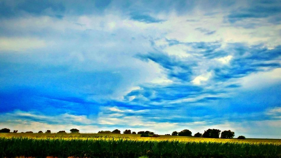Sky And Clouds Roadsidephotography Corn Field Kansas Skies Horizons And Roadtrips