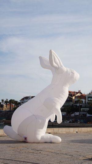 Bunny 🐰 Rabit Modern Art Simplicity Festival Cascais Beach Portugal