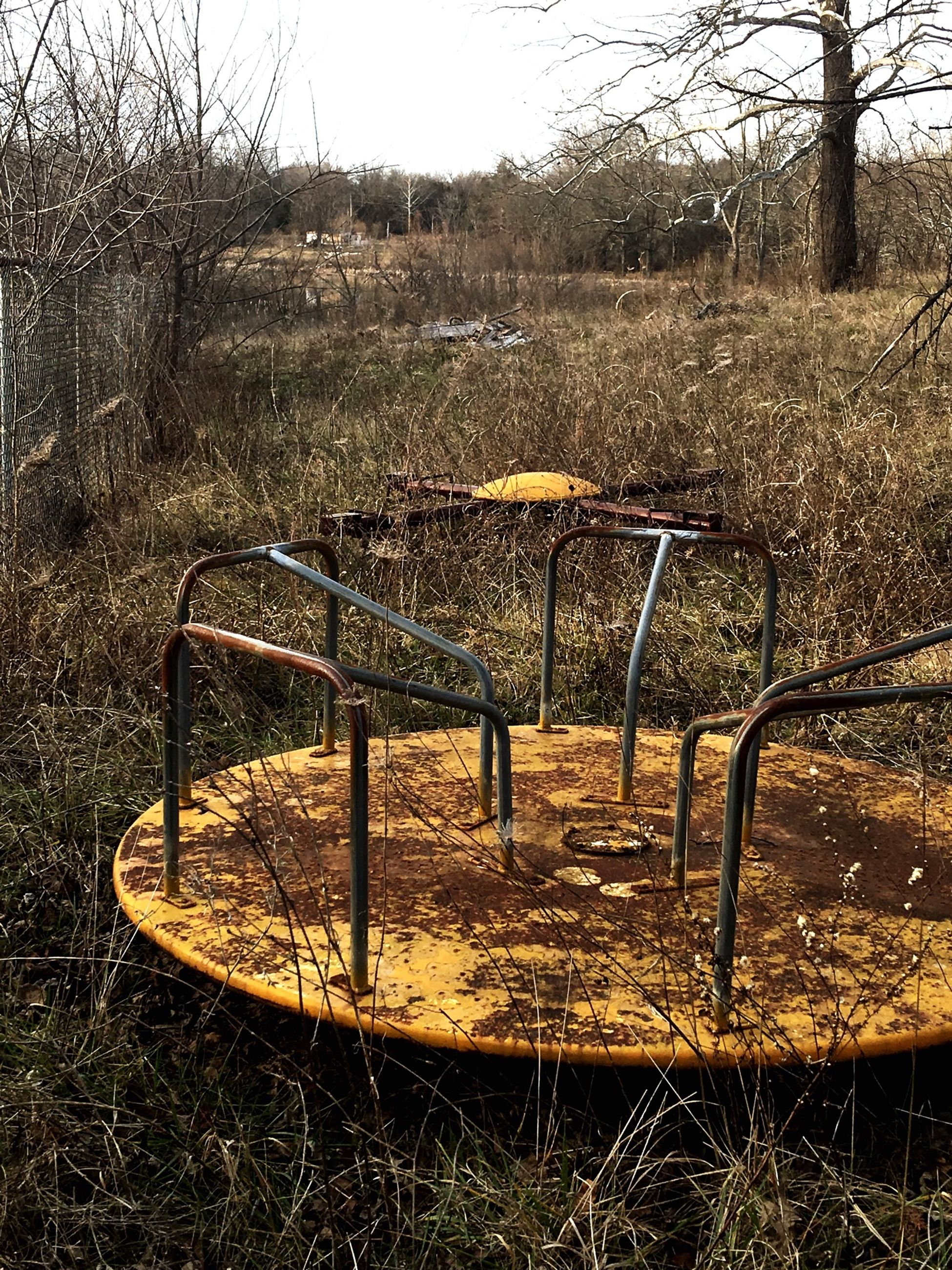 tree, field, absence, empty, metal, day, season, nature, tranquility, sunlight, fence, no people, bench, chair, grass, outdoors, autumn, dry, growth, plant