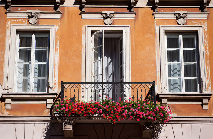Bunches of vibrant red Ivy leaved geranium or Pelargonium peltatum flowers on balcony with opened wooden door in brown wall in Warsaw Old Town, late summertime in Poland. Beautiful ornamental plants outdoors and architecture detail. Horizontal orientation, nobody. Architecture Balcony Balcony Garden Bloom Blooming Blossoms  Building Building Exterior Bunches Of Flowers Clump Flower Flowering Flowers Geranium No People Pelargonium Pelargonium Peltatum Poland Red Wall Window Windows