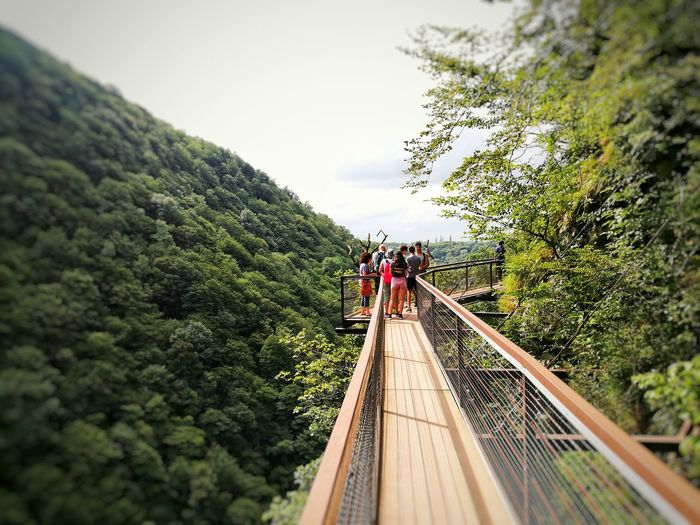 Hanging out Natural Beauty Bridge - Man Made Structure Highup Accross The Line Hiking Adventures Valley River View