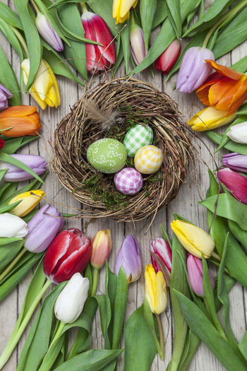 High Angle View Of Colorful Eggs In Nest Amidst Flowers
