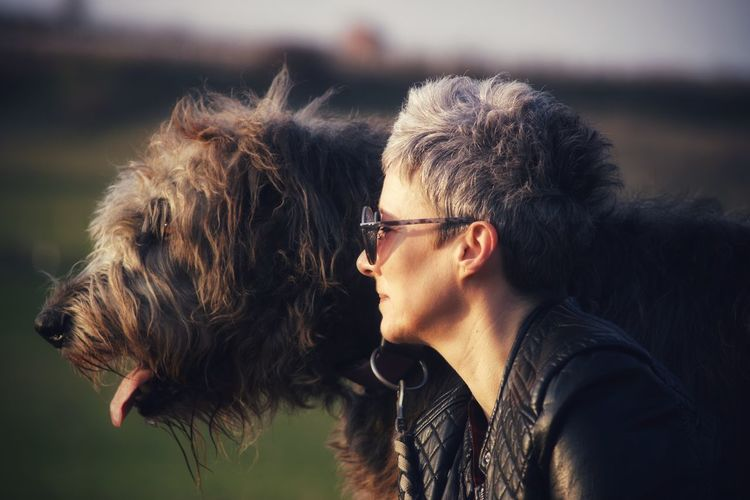 Irish Wolfhound Gentle Giant Animals Dogs Of EyeEm Dogslife My Love Willi The Wolfhound Evenig Light Fun Pets Portrait Dog Eyeglasses  Warm Clothing Leather Jacket Sunglasses