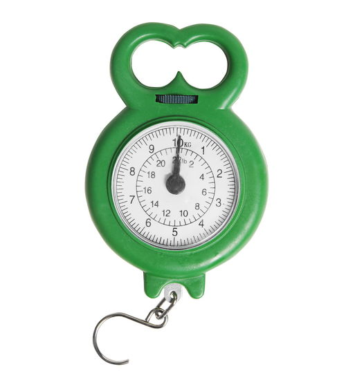 Close-up of weight scale over white background