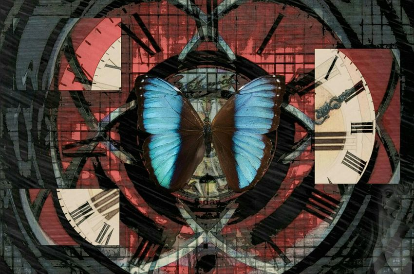Butteryfly effect. Painted Pictures Twisted Dream Dark Fairytale Fairytales & Dreams Creative Power