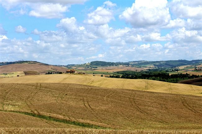 Fields in Tuscany Beauty In Nature Cloud Cloud - Sky EyeEm Best Shots EyeEm Nature Lover Horizon Over Land Idyllic Italia Italy Landscape Landscape_Collection Landscape_photography Nature Non-urban Scene Outdoors Remote Rural Scene Scenics Sky Tranquil Scene Tranquility Tuscany