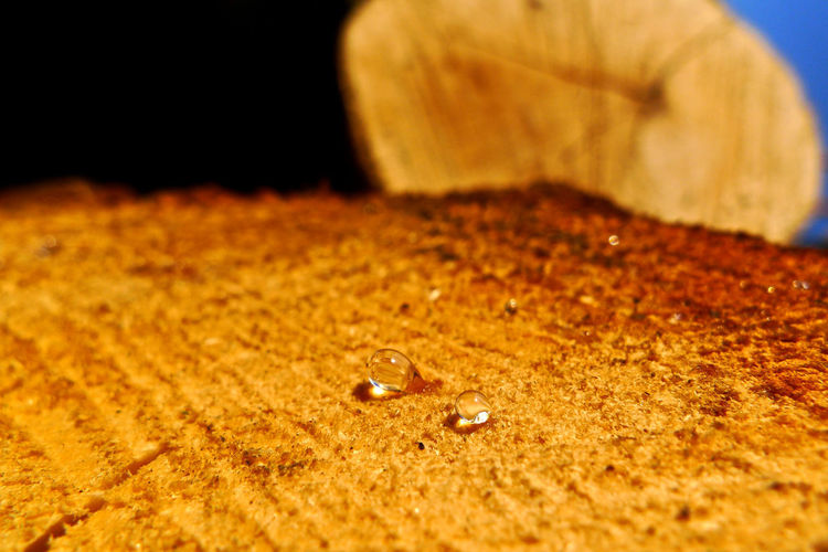 Close-up No People Selective Focus Indoors  Drop Nature Water Solid Rock Sand Studio Shot Jewelry Rock - Object Beauty In Nature Brown Freshness Land Wet Surface Level Purity