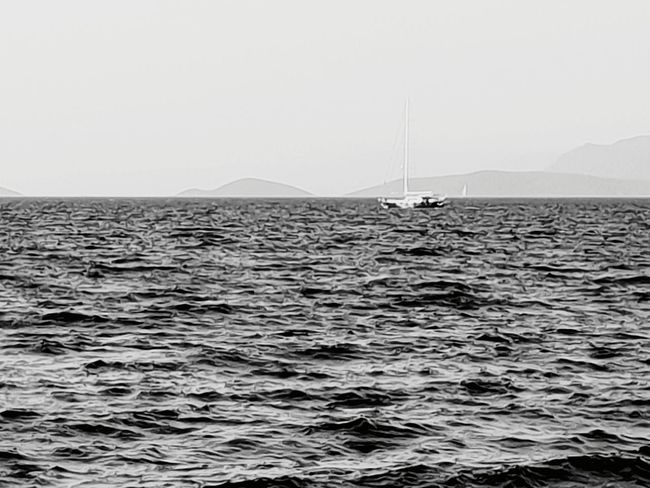 Nautical Vessel Sea Life Sea Photography Themes Beach Point Of View Social Issues Fishing Industry Business Finance And Industry Sky Fishing Boat Tide Coast Coastline Wave Seascape Bay Of Water Low Tide
