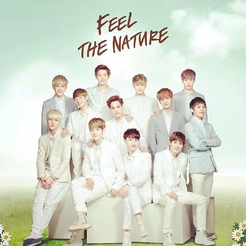 Feel The Nature of EXO Ppz,it's CRAZILY FREAKIN AWESOME!!!! Crayme Naturerepublic EXO EyesMelted Heartmelted too Lol exotic ExoK ExoM HappyWednesday feelin so nature