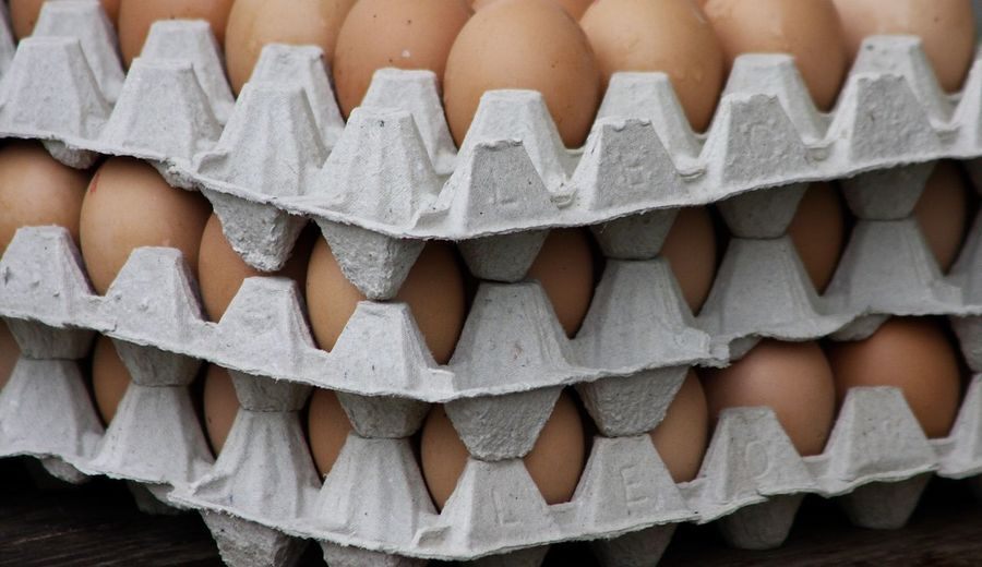Full frame shot of eggs in cartons