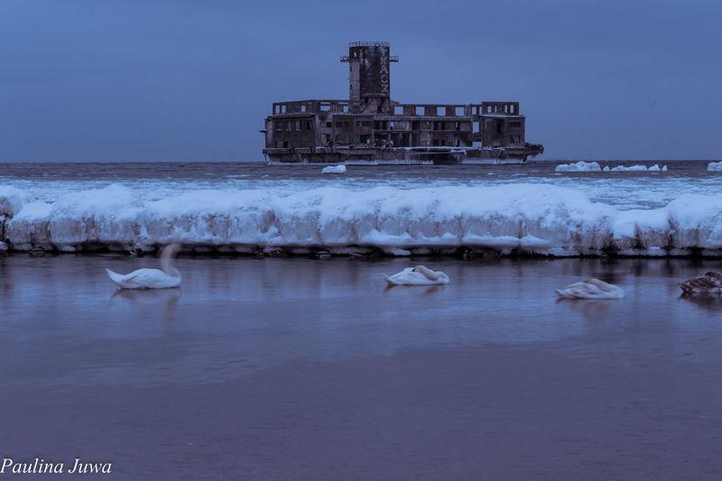 Trojmiasto Poland Gdynia Sea And Sky Sea Winter EyeEmNewHere