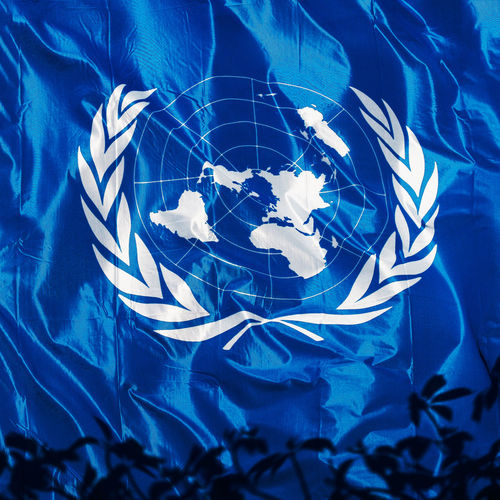 Blue No People Nature Close-up Plant Leaf Plant Part Pattern Digital Composite Illuminated Reflection Shape High Angle View Flower United Nations Flag Symbol United Nations Flag Fullframe White Worldwide International Organisation Human Rights Peace