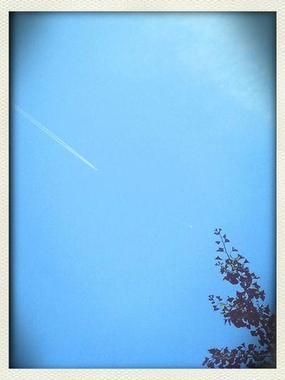 Verano Cielodedomingo Avion