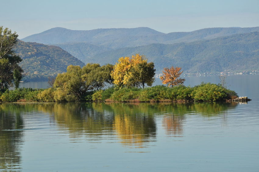 Danube river, Serbia Mountain Water Beauty In Nature Scenics - Nature Tree Tranquility Tranquil Scene Plant Sky Reflection Nature Waterfront Non-urban Scene No People Day Growth Idyllic Outdoors River Autumn Autumn colors Trees
