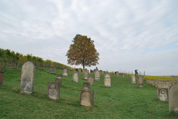 Jüdischer Friedhof Friedhof Rest In Peace Jewish Graveyard Alter Friedhof Old Graveyard Ruhe Und Stille Ruhe In Frieden