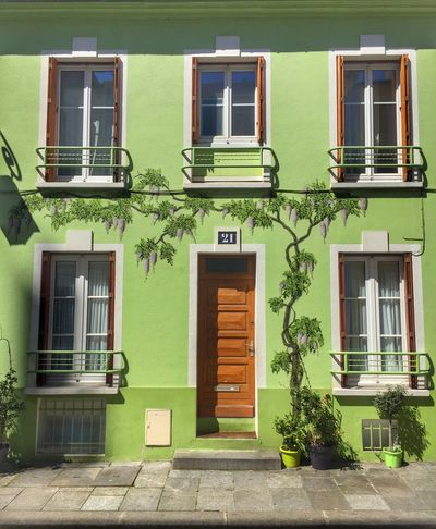 """""""Wisteria Lane"""", Paris Wisteria Wisteria Flower Wisteria Colour Pastel Pastel Colors Wall Art Wall Painting Streetphotography Urbanphotography Houses And Windows House Facade Colorful Street City Life EyeEm Best Shots Rue Crémieux Green Paris Green Color Glycine"""