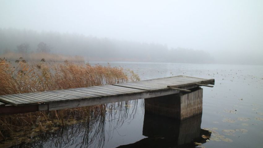 EyeEm Selects Water Fog Tranquility Scenics - Nature Tranquil Scene Nature Outdoors