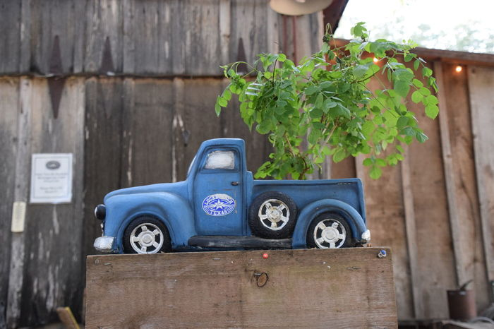 Blue Growth Hill Country Leukenbach Texas Lukenbach Old Old-fashioned Outdoors Plant Potted Plant Shed Texas Tire Truck Wall - Building Feature Wood - Material