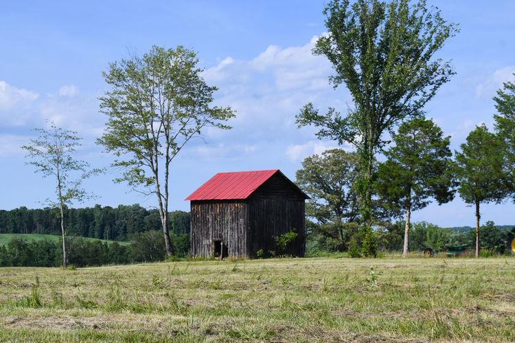 Old Barn 1350