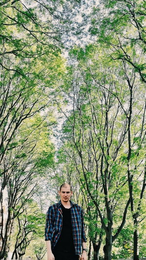Portrait of young man standing against trees in forest