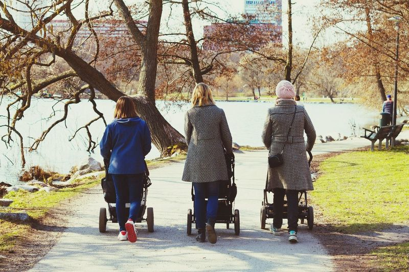 Rear View Of Women Pushing Baby Carriage On Footpath In Park