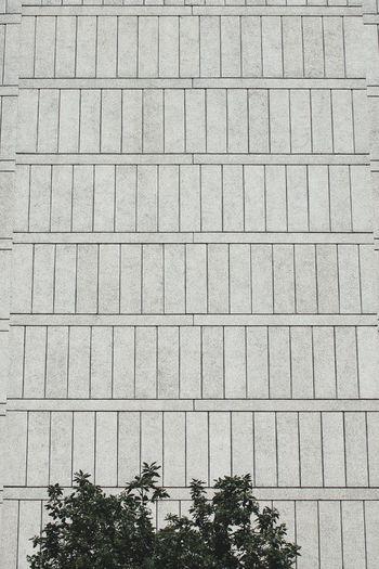 Tree no people full frame pattern LONDON❤ London concrete building exterior modernist architecture housing complex housing esta Tree No People Full Frame Pattern LONDON❤ London Concrete Building Exterior Modernist Architecture Housing Complex Housing Estate Postcode Postcards Alton Estate