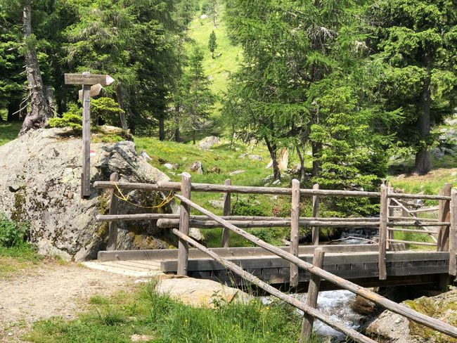 Alto Adige Ultental Südtirol South Tyrol Italien Italy Italia Plant Tree Nature Day Green Color Sunlight Growth No People Railing Fence Security Barrier Boundary Protection Outdoors Architecture Built Structure Beauty In Nature