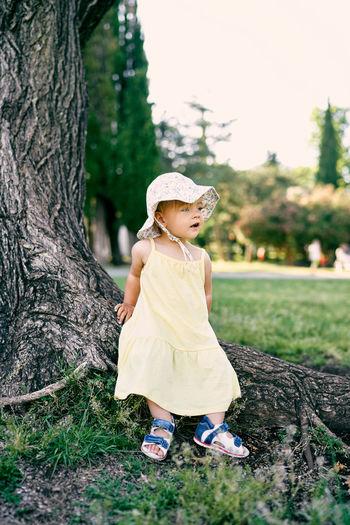 Full length of cute girl on tree trunk
