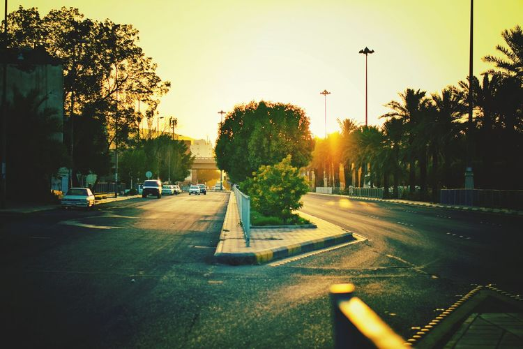 Best Of Sunset