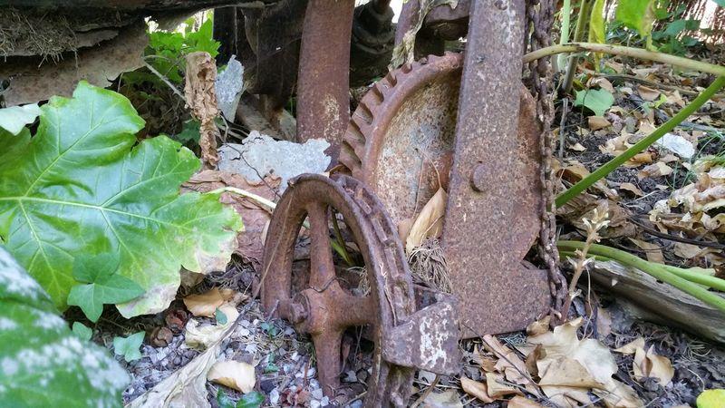 Art Artistic ArtWork Bad Condition Brown Chain Day Deterioration Dry Garden Garten Green Kette No People Outdoors Plants Rusty Zahnrad Zahnräder