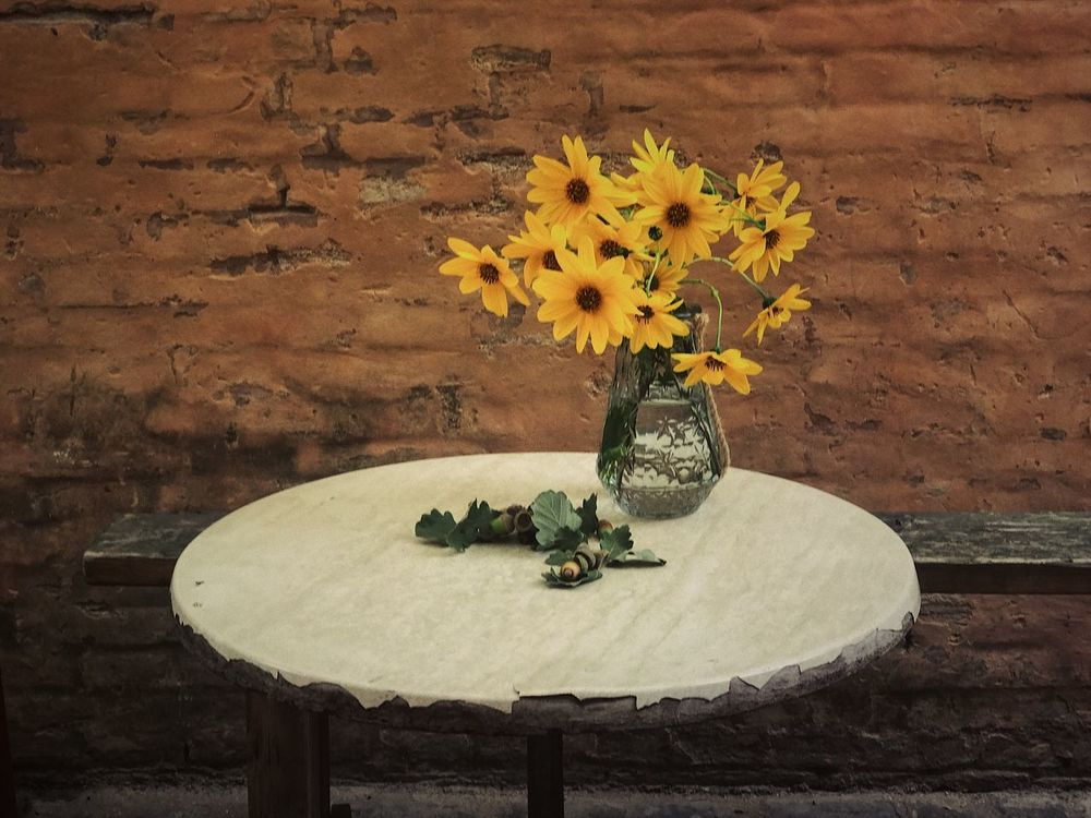 Flowers on table Flowers Table Flower Vase No People Table Flower Head Yellow Sunflower Nature Freshness Fragility Close-up Day