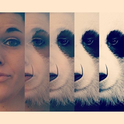 Crazy Face ★ Panda Face  That's Me Crazy Photo Change My Face Seems_good Iloveanimals Lots Of Laughs Black & WhiteBlack & White