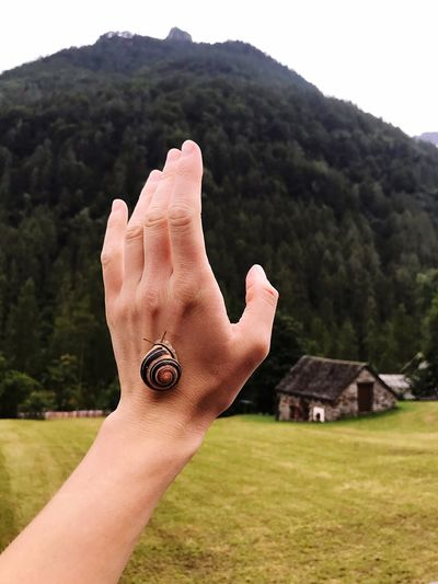 Cropped image of person hand on mountain