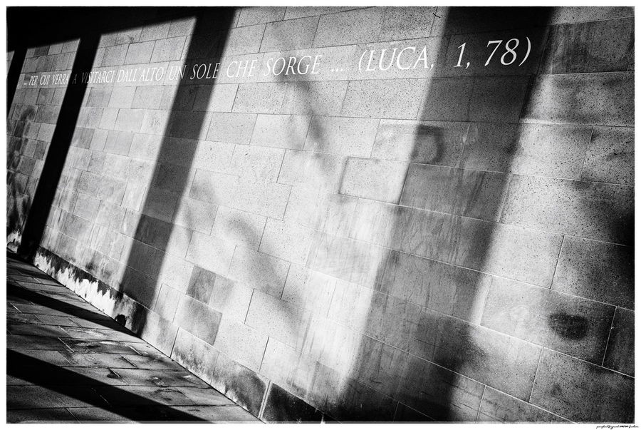 Cemetery Photography Venice, Italy Day Luca No People Outdoors Religious  Text