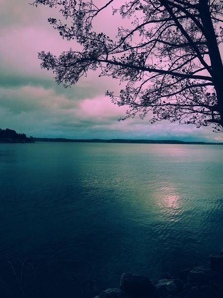 Beauty In Nature Nature Tranquility Scenics Water Sky Magic Branch